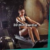 30 Min Cardio von Various Artists