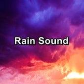 Rain Sound by Thunderstorm Sleep