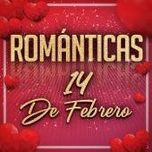 Románticas 14 De Febrero de Various Artists