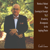 Learning by Example, Vol. 5 by Mordecai Shehori