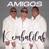Kembalilah von Amigos