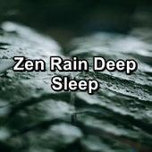 Zen Rain Deep Sleep by Sleep Sounds