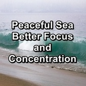 Peaceful Sea Better Focus and Concentration by Sleep Music Lullabies (1)