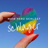 Mein Herz schlägt Schlager de Various Artists