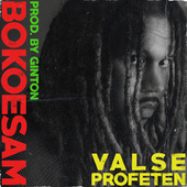 Valse Profeten by Bokoesam