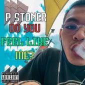 Do You Feel Like Me? by P Stoner
