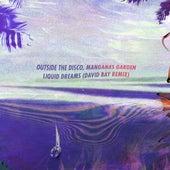 Liquid Dreams (David Bay Remix) by Outside The Disco
