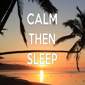 Calm Then Sleep by Color Noise Therapy