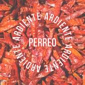 Perreo Ardiente de Various Artists