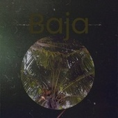 Baja von Various Artists