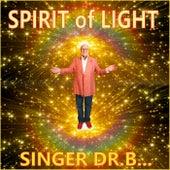 Spirit of Light by Singer Dr. B...