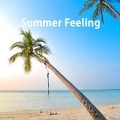 Summer Feeling fra Various Artists