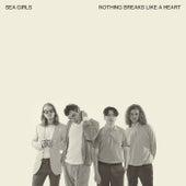 Nothing Breaks Like A Heart by Sea Girls