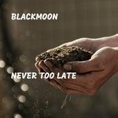 Never Too Late de Black Moon