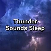 Thunder Sounds Sleep by Deep Sleep Meditation
