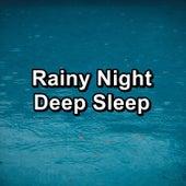 Rainy Night Deep Sleep by Deep Sleep Meditation