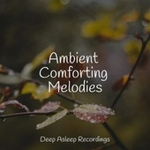 Ambient Comforting Melodies by Instrumental