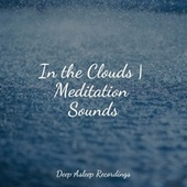 In the Clouds   Meditation Sounds by Sleep Sound Library