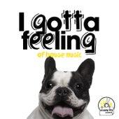 I Gotta Feeling of House Music de Various Artists