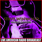Walking On Water (Live) by Blues Brothers