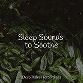 Sleep Sounds to Soothe von Massage Music