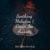 Soothing Melodies | Peace, No Anxiety by Classical Study Music (1)
