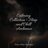 Calming Collection | Sleep and Chill Ambience by S.P.A