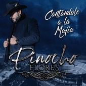 Cantándole a la Mafia de Pinocho Flores