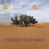 I Forgot Your Smile di Satellite Soul