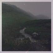 Angela Jones by Various Artists