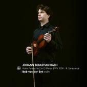 Violin Partita No. 2 in D Minor, BWV 1004: III. Sarabande von Bob van der Ent