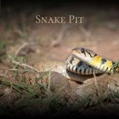 Snake Pit de Various Artists