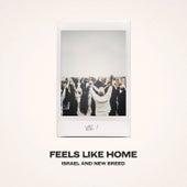 Feels Like Home, Vol. 1 by Israel & New Breed