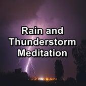 Rain and Thunderstorm Meditation de Nature Sound Collection