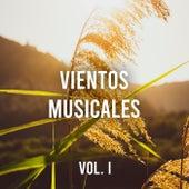 Vientos musicales Vol. I de Various Artists