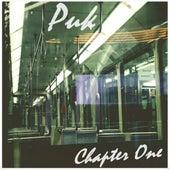 Chapter One von Puk