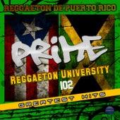 Reggaeton University 102 by Various Artists