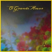 O Grande Amor de Various Artists