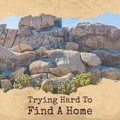 Trying Hard To Find A Home by Various Artists