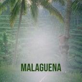 Malaguena by Various Artists