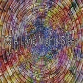 65 A Long Nights Sle - EP de Best Relaxing SPA Music