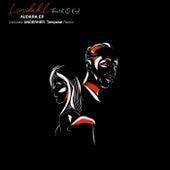 Audara EP von Lindahl