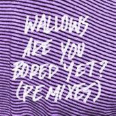 Are You Bored Yet? (feat. Clairo) (Remixes) de Wallows