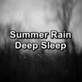 Summer Rain Deep Sleep by Thunderstorm Sound Bank
