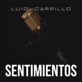 Sentimientos by Luigi Carrillo