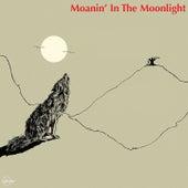 Moanin' in the Moonlight de Howlin' Wolf