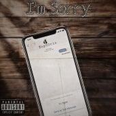 I'm Sorry by Euph0ria