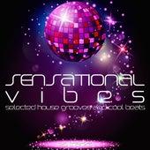 Sensational Vibes - Selected House Grooves & Cool Beats de Various Artists