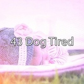 43 Dog Tired by White Noise Babies