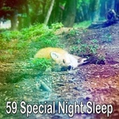59 Special Night Sle - EP by S.P.A